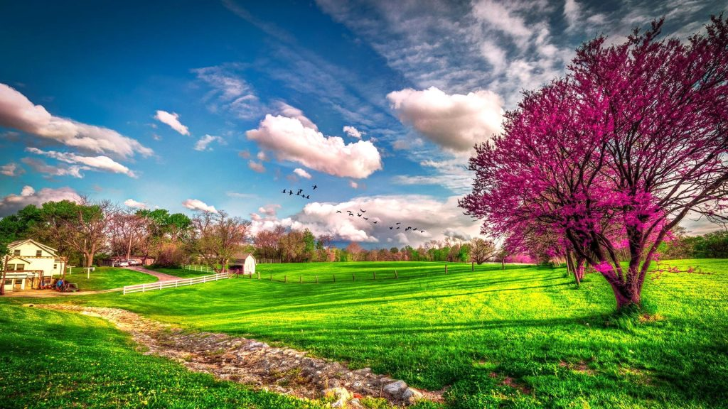 beautiful-spring-hd-wallpapers